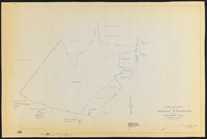 Plan of land owned by Caroline K. Delamater located in Rockport, Mass.