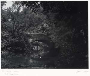 Brookline Photograph Collection
