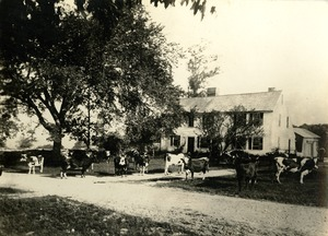 Flint Farm, West Main Street, Shrewsbury, Massachusetts.