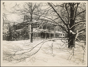 Front of Loring-Greenough House with large tree at right