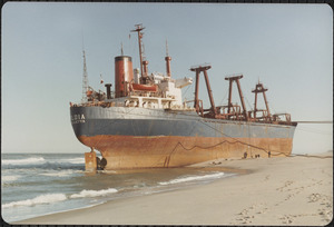 Eldia aground on the outer beach