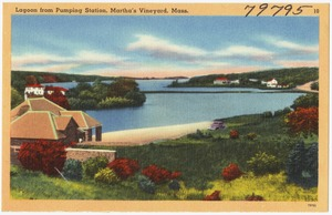 Lagoon from Pumping Station, Martha's Vineyard, Mass.