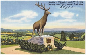 The Elk at Whitcomb Summit overlooking Deerfield River Valley, Mohawk Trail, Mass.