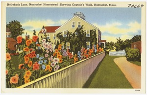 Hollyhock Lane, Nantucket Homestead, showing Captain's Walk, Nantucket, Mass.