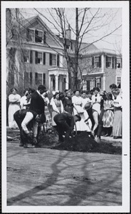 Allen School, Arbor Day, West Newton
