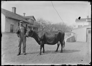 Man w/ cow, 7 Gates