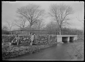 Middletown brook or poss. Brook at 7 Gates? WT, MLW