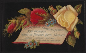 Newton photographs collection : advertising trade cards - Advertising trade cards - Auburndale trade cards - J. W. Davis, Auburndale, Mass. - Cosmopolitan Emporium of Fashions -