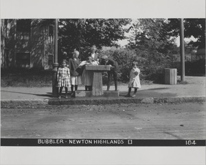 Newton Forestry Department Photographs, 1908-1918 - Bubbler - Newton Highlands -