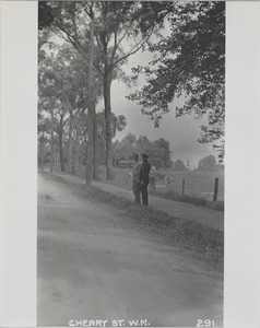 Newton Forestry Department Photographs, 1908-1918 - Cherry Street, West Newton -