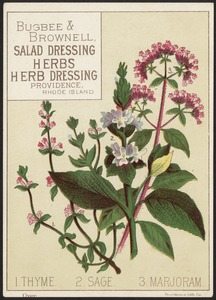1. Thyme. 2. Sage. 3. Marjoram. - Bugbee & Brownell, salad dressing, herbs, herb dressing, Providence, Rhode Island