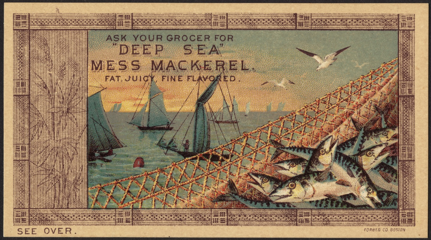 Ask Your Grocer For Deep Sea Mess Mackerel Fat Juicy Fine Flavored Digital Commonwealth