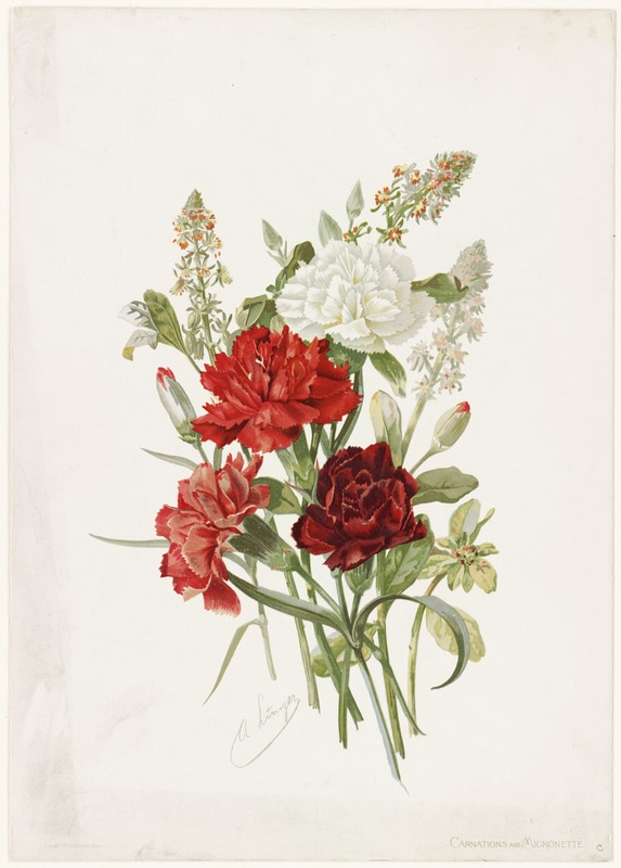 Carnations and Mignonette