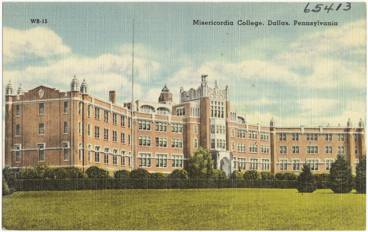 Misericordia College, Dallas, Pennsylvania