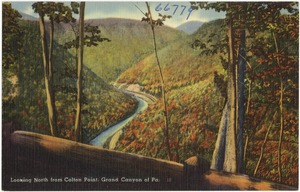Looking north from Colton Point, Grand Canyon of Pa.