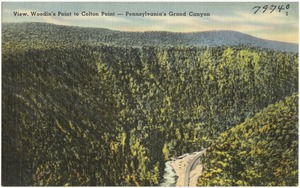 View, Woodin's Point to Colton Point -- Pennsylvania's Grand Canyon