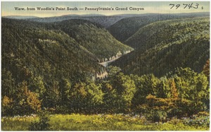 View, from Woodin's Point South -- Pennsylvania's Grand Canyon