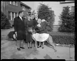 James Michael Curley w/great dane dog during campaign