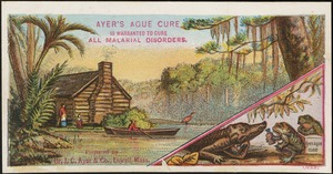 Ayer's Ague Cure is warranted to cure all malarial disorders.