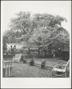 Garden terrace with potted plants and wicker chairs; greenhouse and willow trees in distance