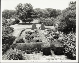 Perennial garden; people in distance