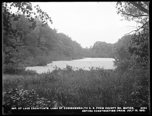 Sudbury Department, improvement of Lake Cochituate, land of Commonwealth, southeast from county road, before constructing drain, Natick, Mass., Jul. 13, 1910