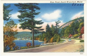 Bear Pond, South Waterford, Maine