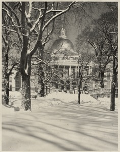 Common and State House in snow