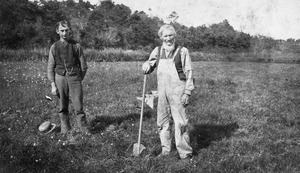 Ansel E. Fuller (1843-1924) working with his son Calvin in their cranberry bog south of the homestead on Cotuit Road