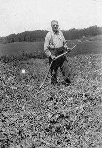 Ansel Austin Fuller, cutting hay with scythe