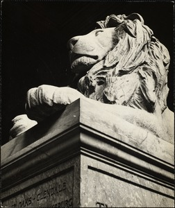 One of the two lions on main staircase of Boston Public Library, Copley Sq.