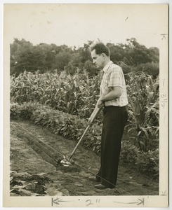 Hoeing a Field, Perkins School for the Blind