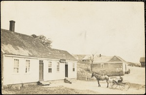 Horse and carriage in front of house
