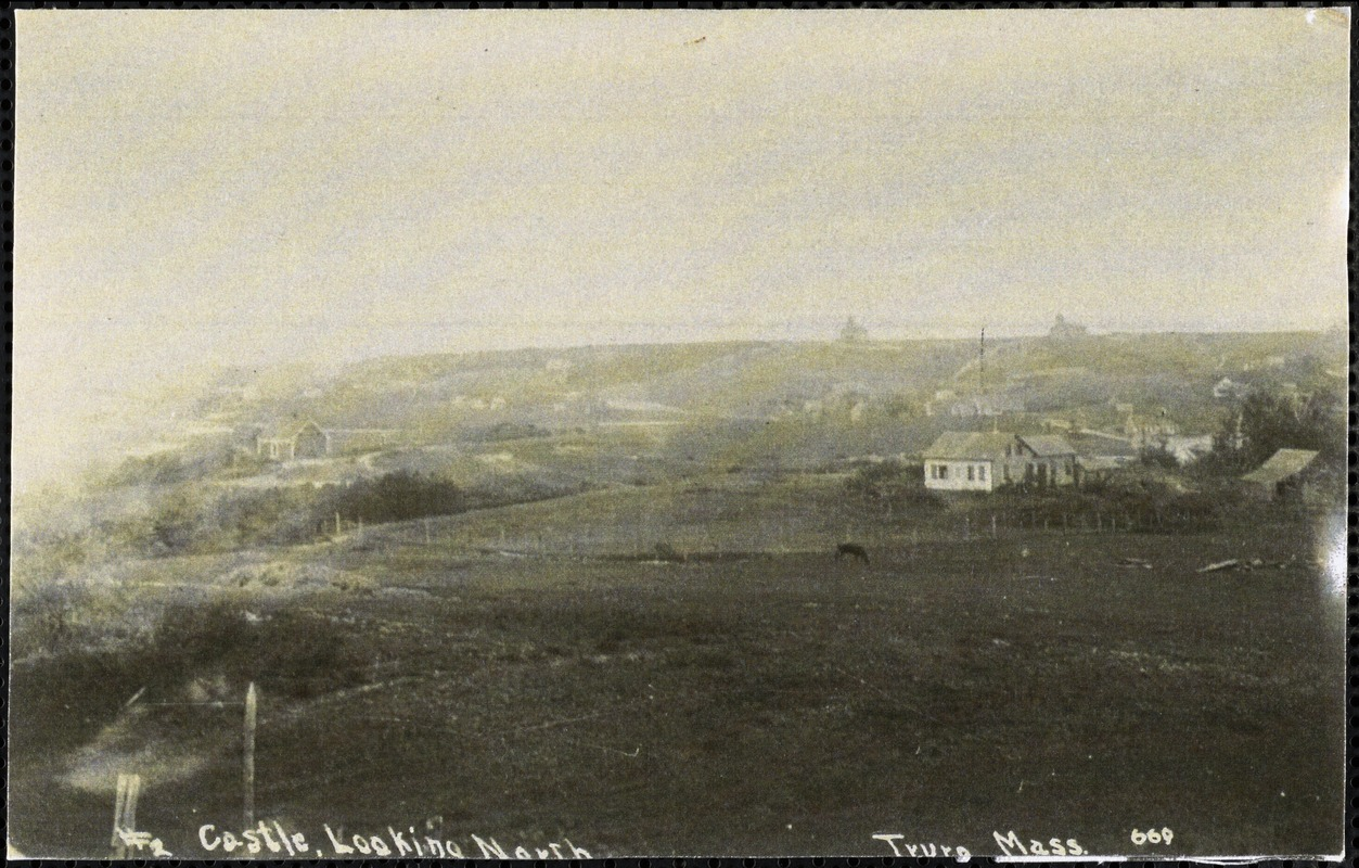 Castle, looking north, Truro, Mass.