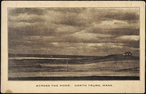 Across the moor, North Truro, Mass.