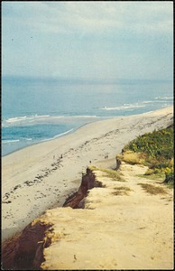 Cape Cod, Mass. Beach and dunes