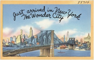 Just arrived in New York, the wonder city