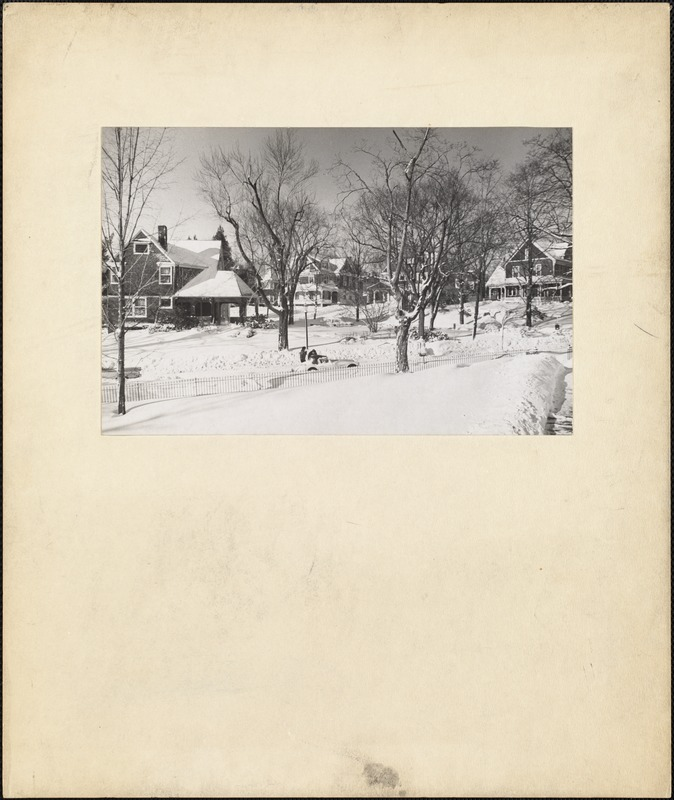 Cottages on Grove Street and Eastman Circle, c. 1960