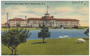 Monmouth Hotel, (rear view), Spring Lake, N. J.