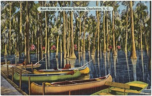 Boat scene in Cypress Gardens, Charleston, S. C.