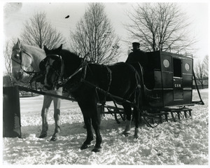Fred Green and horse sleigh stage coach