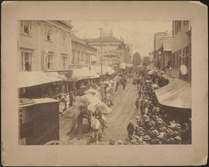 Circus Parade, looking north on Purchase from Union