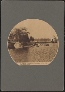 Little Quitticas Pond, the source of New Bedford's water supply