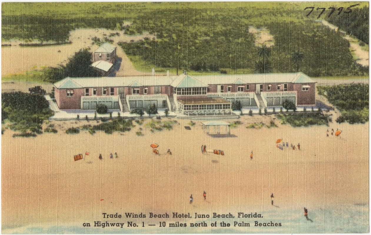 Trade Winds Beach Hotels Juno Florida On Highway No 1 10 Miles North Of The Palm Beaches