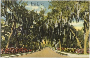 Barton Avenue, Rockledge, Florida
