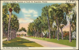 Avenue of Palms, Fountain of Youth, St. Augustine, Florida, the oldest city in the United States