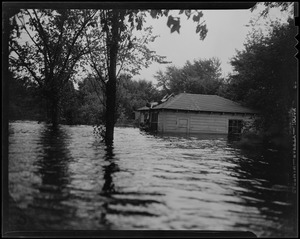 A young man on rooftop of a building reaching over to others below in flooded waters