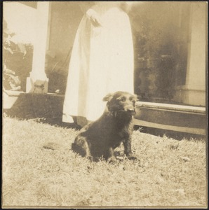 Dog at feet of woman in white dress standing in front of porch