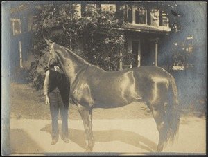 Ashdale Farm. Unidentified man with horse and buggy in front of house