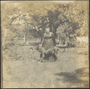 Harriet M. Cornwall Granger (Mrs. George Granger) standing w/dog in orchard at Ashdale Farm